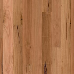Blackbutt 1 strip Matt Brushed