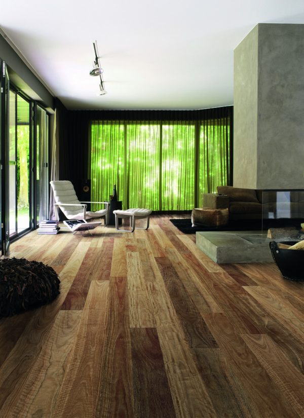 Colonial Spotted Gum