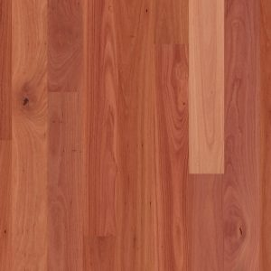 Sydney Blue Gum 1 Strip